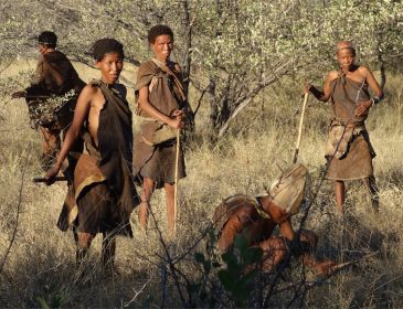 The culture and traditions of the San people of Africa